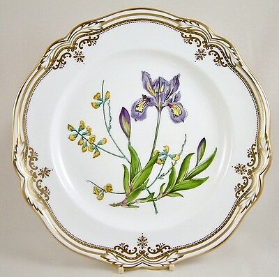 """Stunning Spode China Stafford Flowers England 11⅛"""" Dinner Plate Y8519 Perfect!"""