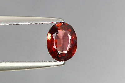 1.200 Cts Full Fire 100% Natural Earth Mine Red Zircon Loose Gemstone Gem~!!!