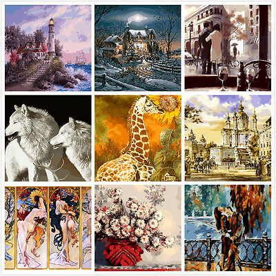 Choose From Hundred Large Painting By Number Kits DIY 40*50CM S2 AU STOCK