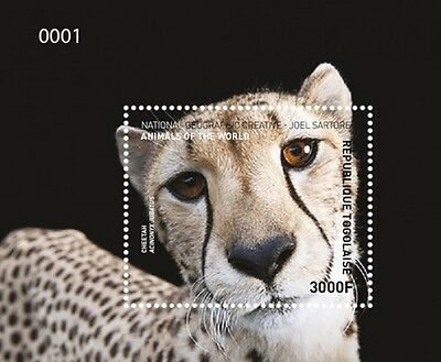 Z08 IMPERFORATED NIG16515ab NIGER 2016 Owls MNH ** Postfrisch Set