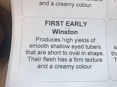 Premium Scottish Certified 2kg net of WINSTON First Early Seed Potatoes