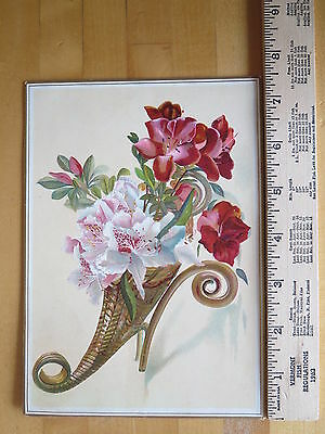 Cornucopia Victorian Trade Card Advertising Kenny's Roasted Coffees Antique