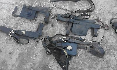 Job Lot Of 4 Antique / Vintage Horse Driving Bridles / Blinders .Winkers No 3