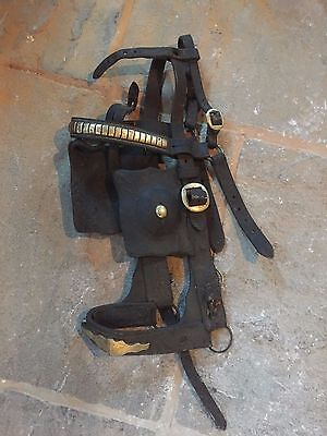 Antique / Vintage Horse Driving Bridles / Blinders .Driving Winkers