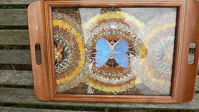 Fab.butterfly Wing Art Deco Style Inlaid Wooden Tray Brazil-Entomology-Uk P & P