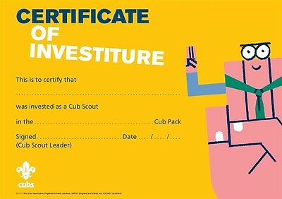 Cubs Investiture Certificates Pack of 10 (2015) NEW