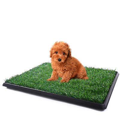 "25""x20"" Puppy Pet Potty Training Pee Indoor Toilet Dog Grass Pad Mat Turf"