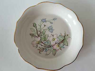 Royal Winton Tudor rose Summertime dish 7.5 inches wide