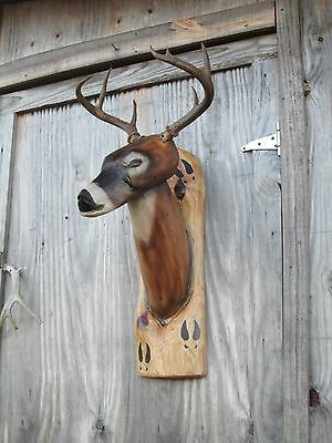 Chainsaw Carving Deer Buck 8 Point Antlers Wood Rustic Cabin Decor Wall Mount
