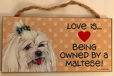 "Love & Laughter Pet Sign Wood - Maltese Dog -  5""X10"""