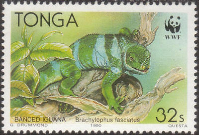 Tonga 1990 SG1105 32s Iguana searching for food MNH