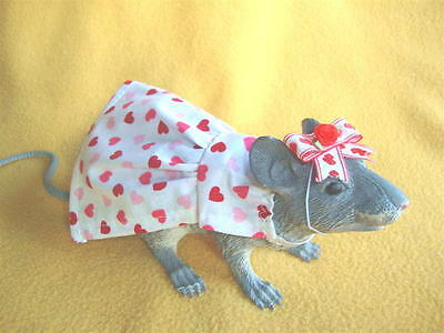 Valentine's Day Outfit for Rat from Petrats