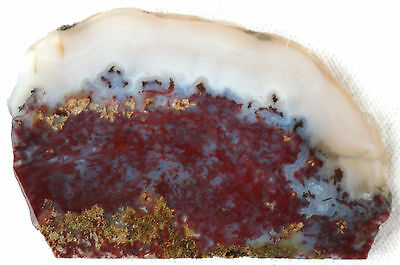 Dendritic - Moss Agate Slab - 70 Grams  - Red - Gold