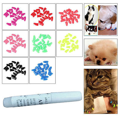 20pcs Pet Cat Dog Claw Paw Cover Grooming Nail Caps With 1 Glue *UK STOCK*