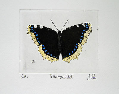 Butterfly Etching, Schmetterling, Radierung, Trauermantel, Nymphalis antiopa
