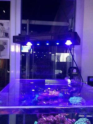 165W Full Spectrum Led - Coral Reef Aquarium Fixture - 2 Dimmable Channels