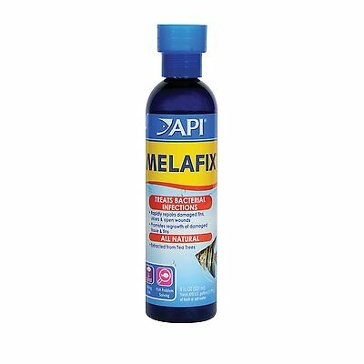 API Melafix 237ml Natural Anti Bacterial Aquarium Treatment Fungus/Finrot/Ulcers