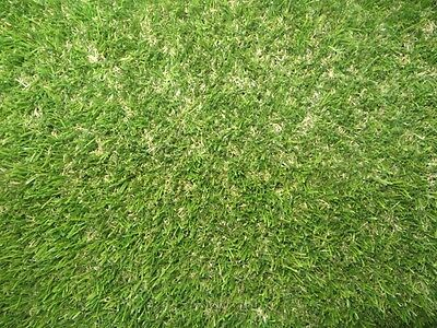 20mm Thick Super Premium NEW Fake Artificial Grass Astro Turf 2x5m Roll
