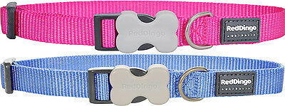 Red Dingo Plain Neon Pink OR Blue Puppy Dog Collar Size X Small-Large
