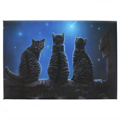 Lisa Parker Fridge Magnets Magnet Wish Upon A Star Cats Wicca Pagan - New