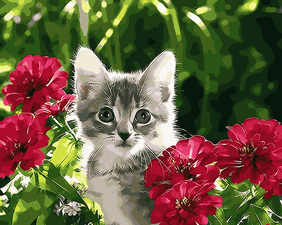 Large Paint By Number Kits S2 40*50CM DIY Kitten with Flowers 8111 AU STOCK