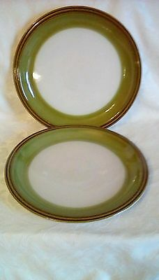 Denby Rochester dinner plates 10.25 inches x 2 in good used condition