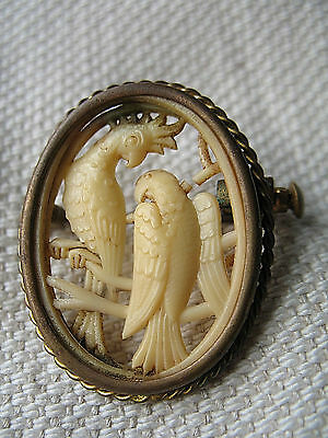 Vintage Depose France Art Deco Carved Parrots Celluloid Brooch Pin Cameo