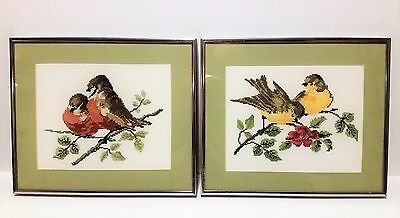 Framed and Matted Needle Point Pictures of Birds on a Branch -  Set of 2