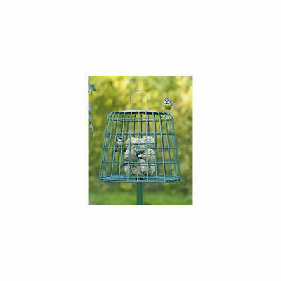 C J Wildbird Foods Cj Guardian Fat Ball & Suet Feeder Green 26x31cm