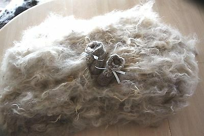 Coloured Mohair Rare Breed fleece 1kg/Raw/Carded ready to use