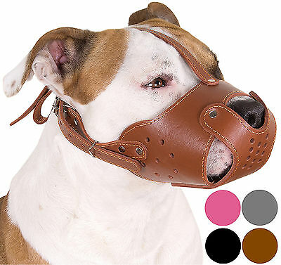 Leather Dog Muzzle PitBull Pit Bull AmStaff Basket Staffordshire Terrier