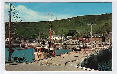 SCRABSTER FROM HARBOUR: Caithness postcard (C23834)