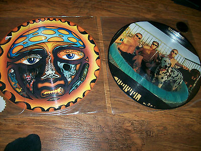 Sublime - 40 oz and self-titled Picture Disc (SET OF TWO LP'S )