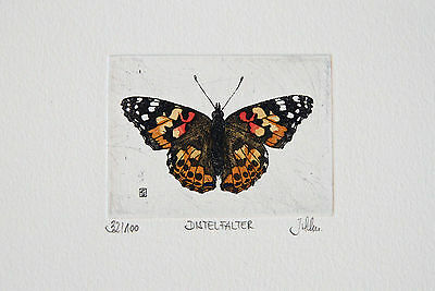 Butterfly Etching, Schmetterling Radierung, Distelfalter, Cynthia cardui