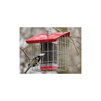 Garden Things Contemporary Squirrel Proof Geohaus Compact Nut Feeder Berry Red