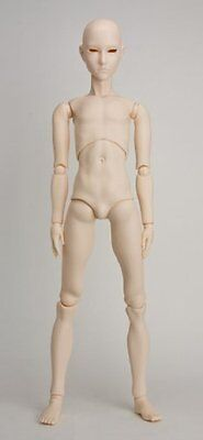 Obitsu 1/3 scale 65cm male body 65BD-M01W-G Whity from Japan F/S