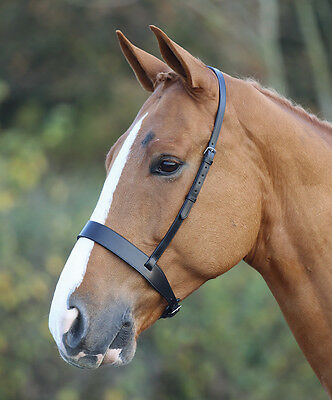 NEW Shires Blenheim Leather Flat Hunter Cavesson Noseband - Brown / Black