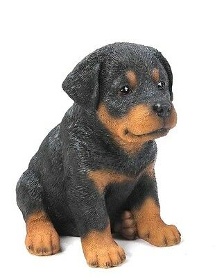 Sitting ROTTWEILER Puppy Dog - Life Like Figurine Statue Home / Garden