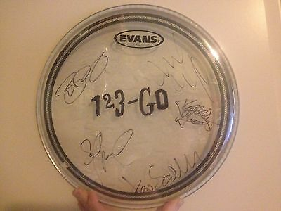 1,2,3-Go Autographed Drumhead Members of Pearl Jam Fuel Dave Matthews Band Foo