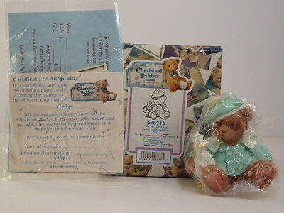 Cherished Teddies Cole We've Got A Lot To Be Thankful For 476714 Enesco Boxed
