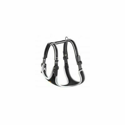 Ergocomfort Harness - Accessories  Dog Harnesses