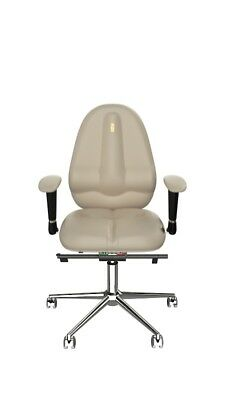 Ergonomic chairs CLASSIC Multi-adjustabe Home Office computer Executive armchair