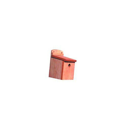 Wild Bird Box 28mm Hole - Accessories - Wild Bird - Nesting