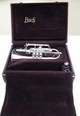 Vincent Bach 184ML Stradivarius Cornet silver-plated - with Warranty