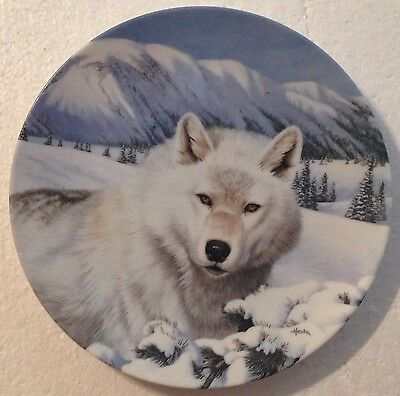 COLLECTABLE WOLF PLATE  - TIMBER GHOST by THOMAS HIRTA - WILD SPIRITS - BRADEX