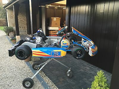 Tony Kart Fa Alonso 2014 Racer 401 Chassis With Nearly New Iame X30 Engine