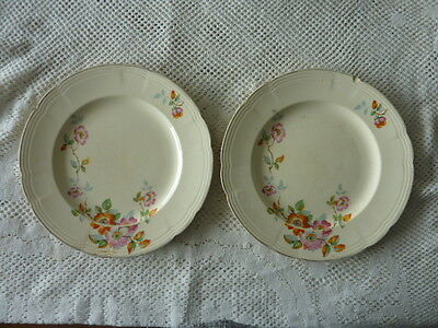 Alfred Meakin England Earthenware Dinner Plate X 2 Blossom Design