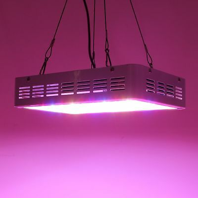300W LED Grow Light Plant Lamp For Plant Hydroponic Veg Bloom With On/Off Switch