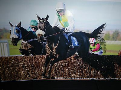 12 Lovely Colour Photos Of Trevor Hemmings Owned Horses Including Many Clouds