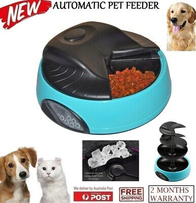 New Digital Display Auto 4 Meals Tray Automatic Pet Dog Cat Pets Feeder Blue